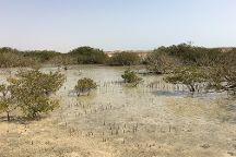 Mangrove Beach, Ras Mohammed, Egypt