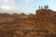 Sinai Safari - Day Tours