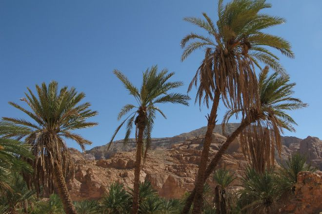 Ain Khudra, Nuweiba, Egypt