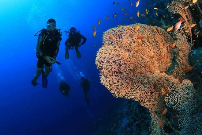 Black Rock Dive Centre, Dahab, Egypt