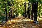Toome Hill Park (Toomemagi)