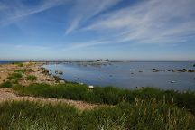 Purekkari Cape, Parispea, Estonia