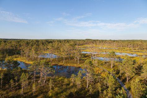 Lahemaa rahvuspark, Vihula, Estonia