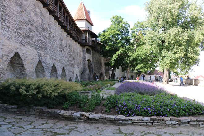 Danish King's Garden, Tallinn, Estonia