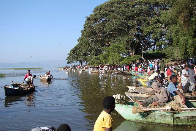 Fish Market, Awasa, Ethiopia