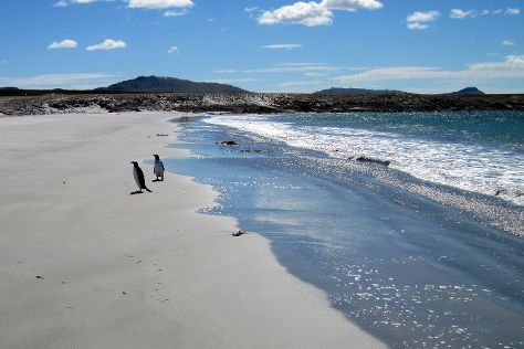 Bluff Cove Lagoon, East Falkland, Falkland Islands