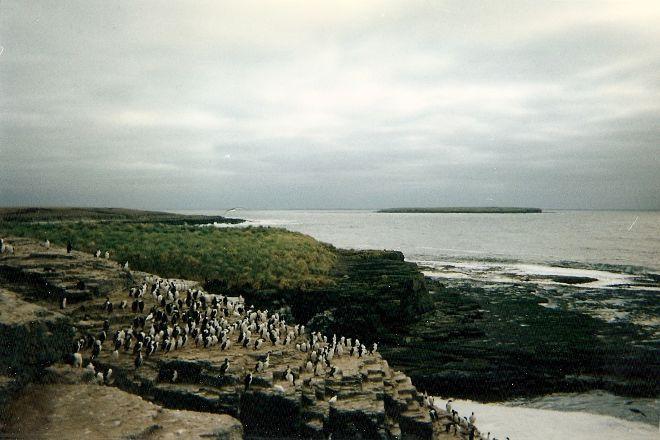 Bleaker Island, East Falkland, Falkland Islands