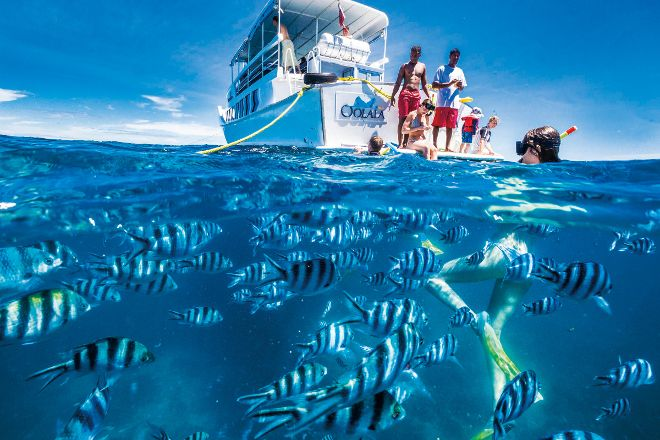 Oolala Cruises, Denarau Island, Fiji