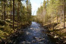 Hossa National Park, Suomussalmi, Finland