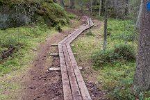 Niivermaki Nature Conservation Area, Kouvola, Finland