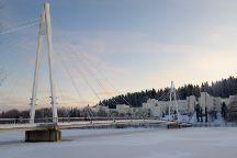 University of Jyvaskyla, Jyvaskyla, Finland