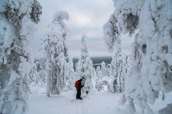 Adventure Apes, Orivesi, Finland