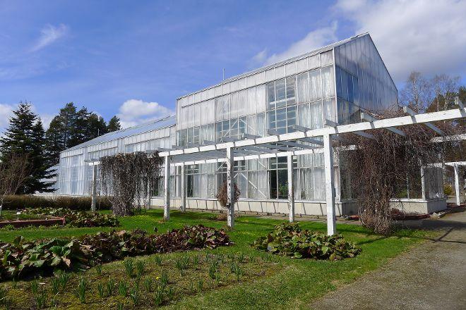 Botania - Botanical Garden and Tropical Butterfly Garden, Joensuu, Finland