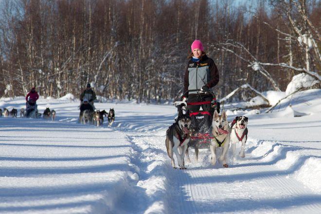 Giewont Husky Adventures, Kittila, Finland