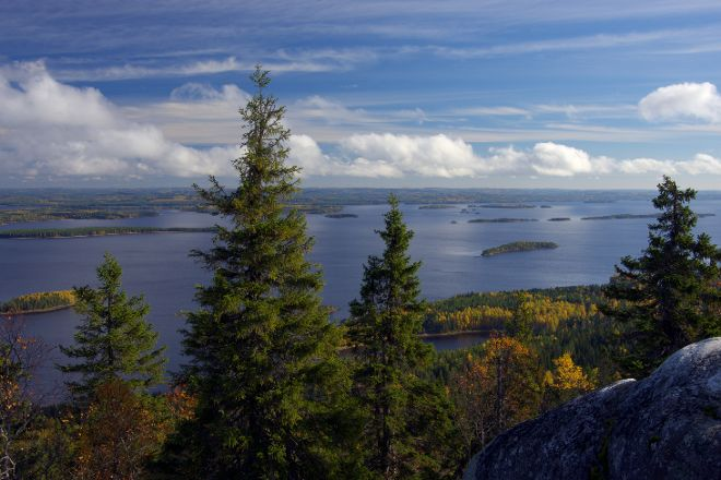 Herajarvi Hiking Trail, Koli National Park, Finland