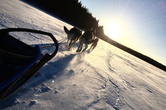 Husky & Yoga Nature, Rovaniemi, Finland