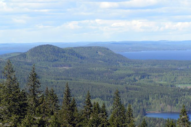 Paha-Koli Hill, Koli National Park, Finland