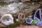 La Grotte de Trabuc