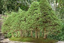 Arboretum de la Vallee-aux-Loups, Chatenay-Malabry, France