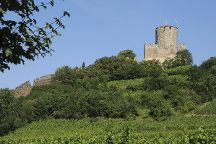 Chateau de Kaysersberg, Kaysersberg, France