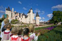 Chateau du Rivau, Lemere, France