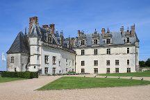 Chateau Royal d'Amboise, Amboise, France
