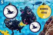 Port Frejus Plongee
