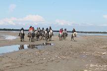 promenade a cheval