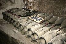Provence and Wine, Avignon, France