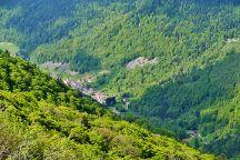Route des Cretes, La Bresse, France