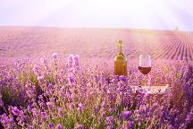 Wine in Provence