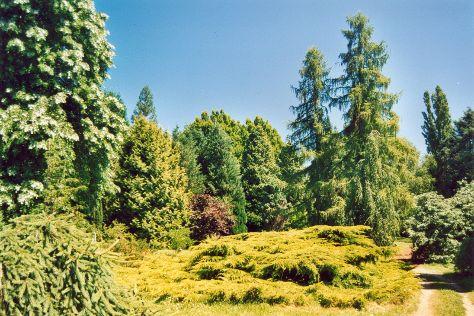 Arboretum National des Barres, Nogent-sur-Vernisson, France