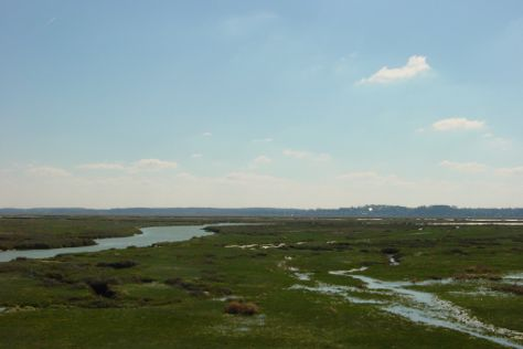 Baie de Somme, Somme, France