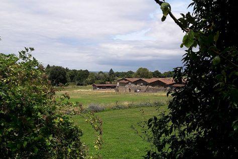 Cassinomagus - Archaeological Park, Chassenon, France