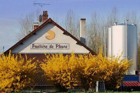 Fruitiere de Pleure, Pleure, France