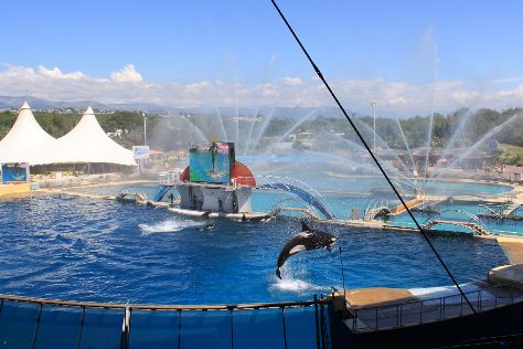 Marineland, Antibes, France