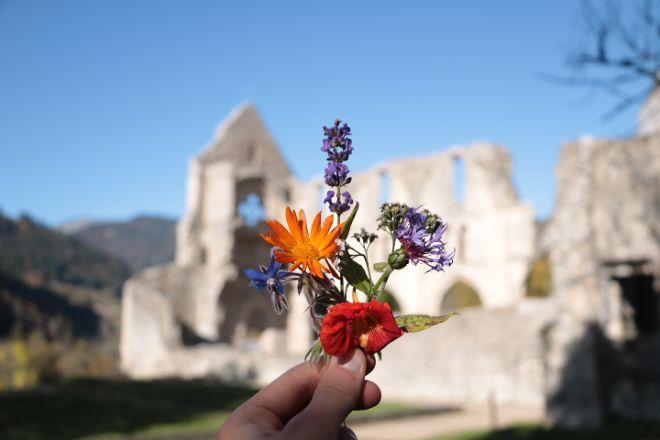 Abbaye d'Aulps, Saint Jean d'Aulps, France