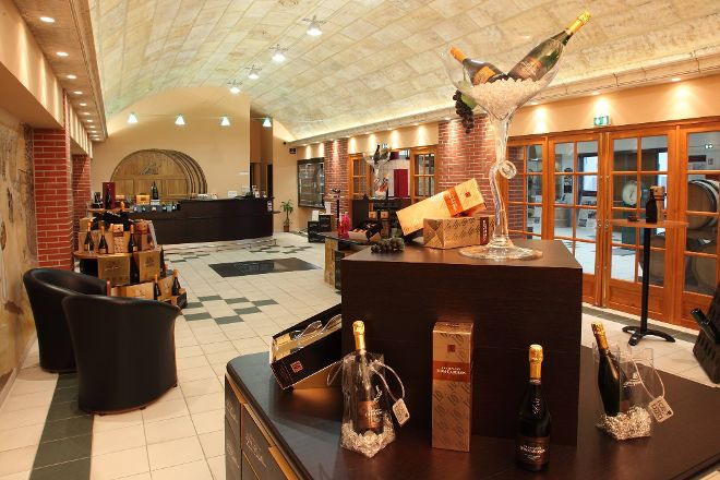 Champagne Dom Caudron, Passy-Grigny, France
