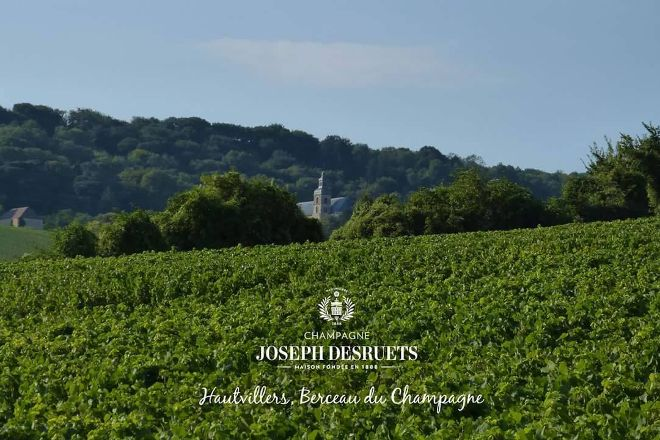 Champagne Joseph Desruets, Hautvillers, France