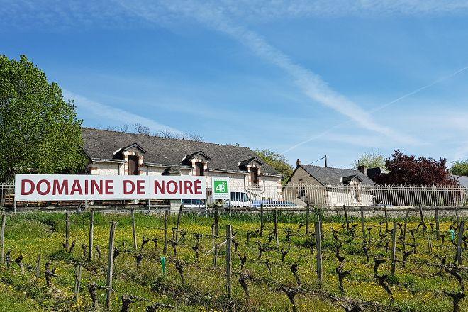 Domaine de Noiré / Jean-Max Manceau, Chinon, France