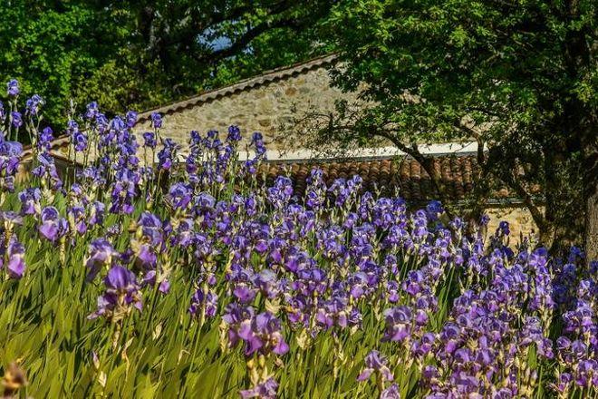 Domaine Val d'Iris, Seillans, France