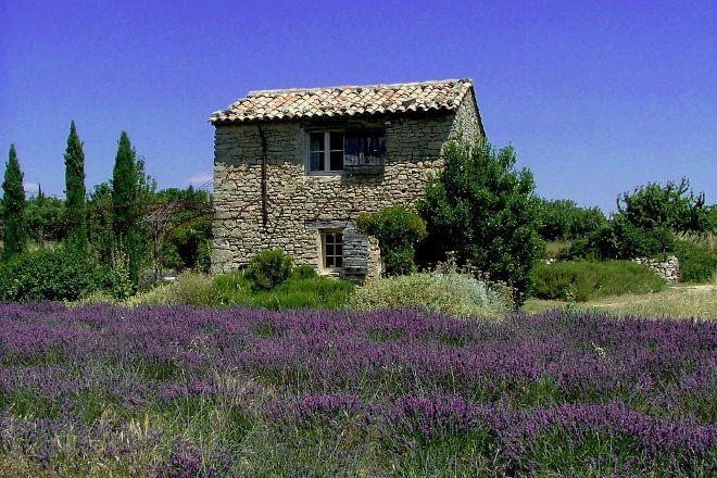 Experience Provence Tours, Avignon, France