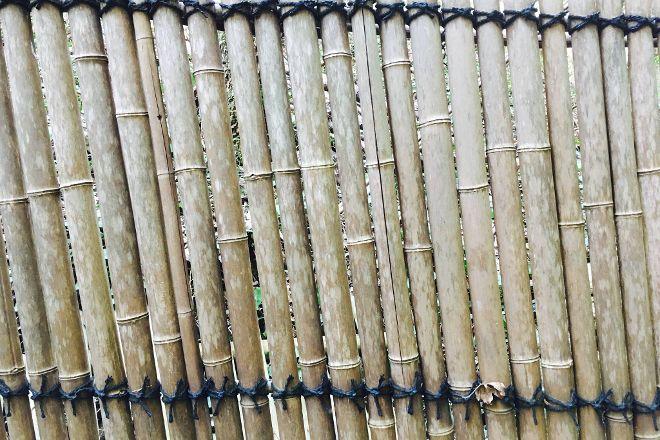 Le Jardin Les Bambous du Mandarin, Montauroux, France