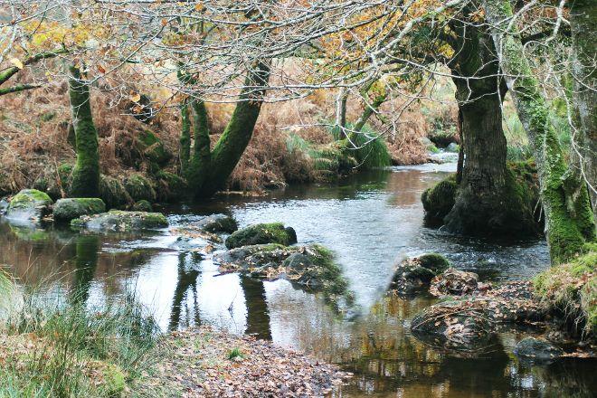 Le Sterou Parc Naturel, Priziac, France