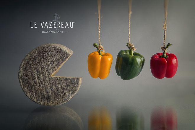 Le Vazereau, La Roche-Clermault, France