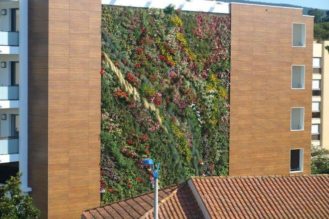 Les Murs Vegetaux, Gassin, France