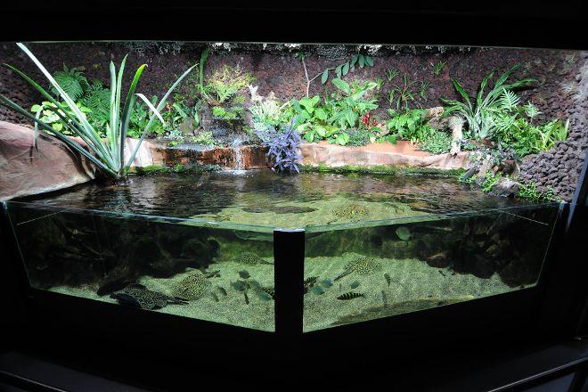 Museum-Aquarium de Nancy, Nancy, France