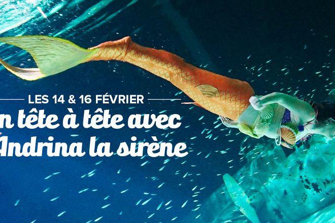 Ocearium du Croisic, Le Croisic, France