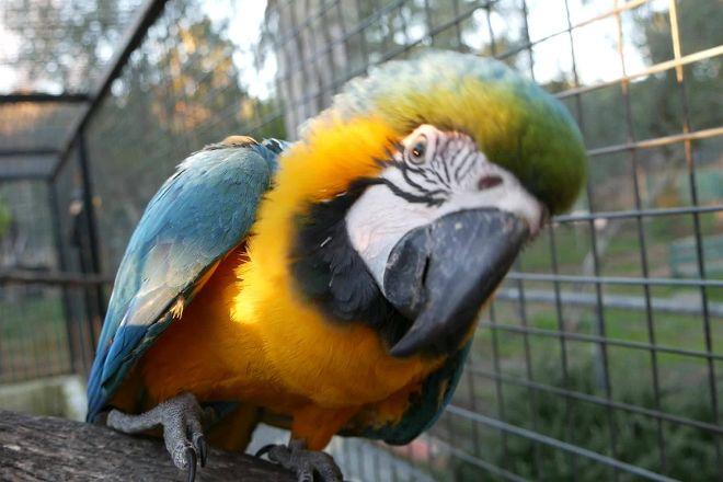 Parc Zoologique de Frejus, Frejus, France