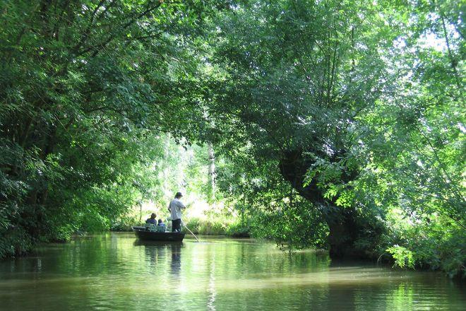 Poitevin Marshes, Nouvelle-Aquitaine, France